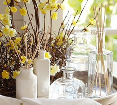 Home fragrance oils and diffusers (Pottery Barn)