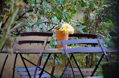 Jardin Madeleine de Scudéry Outdoor Furniture Sets, Outdoor Decor, Photography, Home Decor, Gardens, Photograph, Decoration Home, Room Decor, Fotografie