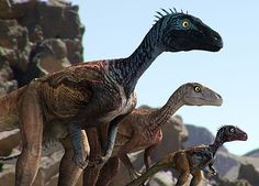 Father (left), mother (center) and baby (right) Eoraptor from Dinosaur Revolution TV series