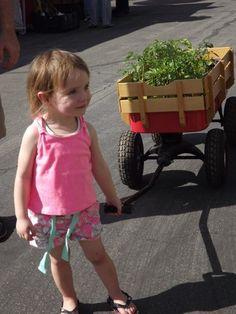 32nd Annual Fall Plant Sale 2015 Encinitas, California  #Kids #Events
