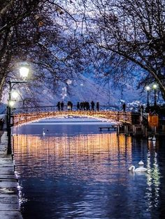 The Bridge of Love (Pont des Amours), Annecy, France by Capucine Lambrey. One of the most exquisite villages in France.