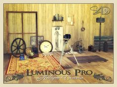 2t4 Conversion of Luminous Pro Antique Camera at Daer0n – Sims 4 Designs • Sims 4 Updates