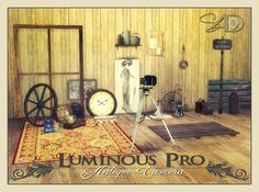 2t4 Conversion of Luminous Pro Antique Camera at Daer0n – Sims 4 Designs • Sims 4 Updates