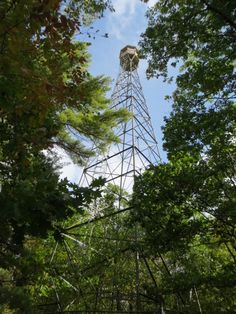 One of Ontario's remaining fire towers in Dorset
