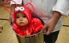 Costumi Halloween divertenti - Bimbo aragosta