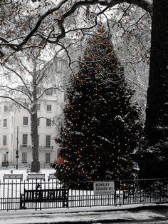 Berkeley Square, London.  Splenderosa.blogspot.com.br