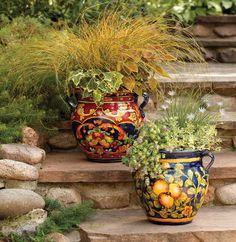 pots as colour instead of flowers...