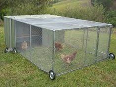 metal+chicken+coop | metal chicken coop - Google Search