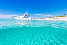 Boat tours and charters on the island of Providenciales in the Turks and Caicos. Explore secluded beaches, snorkel the reefs, see the iguanas, or enjoy a BBQ. Secluded Beach, Charter Boat, Online Travel, Tour Operator, Boat Tours, Turks And Caicos, Travel And Tourism, Snorkeling, Places To Go