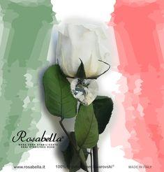 #Maggio il mese della #ripresa... Maggio il mese delle #Rose! #Rosabella #rosagioiello #rosastabilizzata #madeinitaly Rose, Pink, Roses