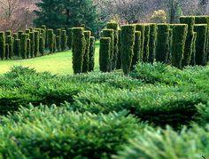 Arras, France - Sericourt Garden