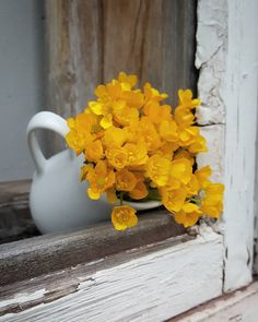 The simple things are often the most beautiful, like these bright yellow flowers in a white jug, resting on a chipped paint window frame. Yellow Flowers, Wild Flowers, Beautiful Flowers, Flower Aesthetic, Aesthetic Colors, Aesthetic Yellow, Yellow Cottage, Shades Of Yellow, Happy Colors