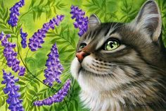 Cats Botanical Purple Vetch Irina Garmashova Cats