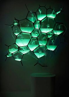 CFL? LED? Pfff. Here's A Light Fixture That Runs On Bacteria | Co.Design: business + innovation + design