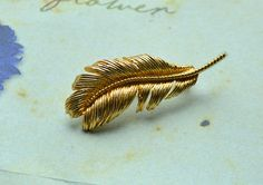 """Feathers appear when angels are near"" - vintage feather brooch for some heavenly gorgeous look https://www.etsy.com/uk/listing/508813956/gorgeous-feather-vintage-brooch-vintage?ref=shop_home_active_25 #brooch #featherjewelry #vintagebrooch #broochoftheday #englishvintage #vintagejewelry #retrostyle #etsyvintage #oldschool #vintagespace #vintageetsy #etsyfind #retro #etsyshop #etsyseller #etsyhunter #vintagecostumejewellery #vintagestore #vintageaccessory"