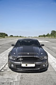 Ford Shelby Gt 500, Mustang Shelby Cobra, Mustang Gt500, Mustang Cars, Ford Gt, Ford Mustangs, Neuer Ford Mustang, Ford Mustang Shelby, 2011 Mustang Gt