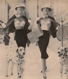 Dalmation bra advertisement