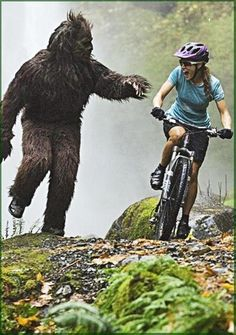 Bigfoot | Hazards of Mountain Biking - So always wear a helmet, make sure you have water, snacks, an extra tube and bicycle tools in your Camelbak, and look for the nearest downhill singletrack to outrun Bigfoot.