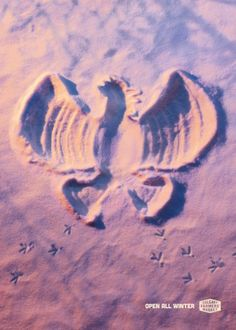 Calgary Farmers' Market: Snow Angels, Rooster