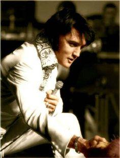 Elvis...beautiful