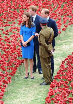 Kate, William and Harry at the Tower of London Poppy display August 2014