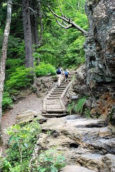 What's your favorite trail in the Smokies?