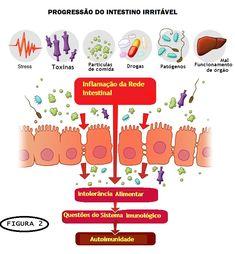 Doenças Auto-Imunes relacionadas à Sindrome do Intestino Irritável