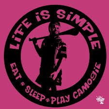 camogie is life Light Project, Cute Quotes, Celtic, Ireland, Irish, Crafty, Hurley, Google Search, Night Light