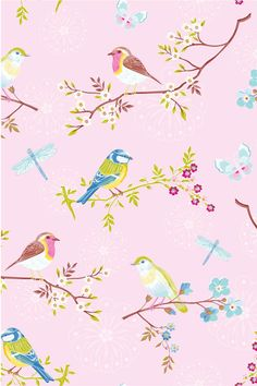 PiP Early Bird Pink Wallpaper