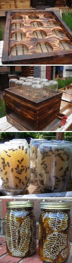 Are you looking for a backyard beehive idea? DIY with wood frame and mason jars Outdoor Projects, Garden Projects, Diy Projects, Pallet Projects, Diy Backyard Projects, Woodworking Projects, Outdoor Crafts, Backyard Ideas, Outdoor Decor