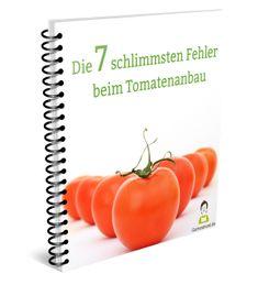 Fehler Tomatenanbau