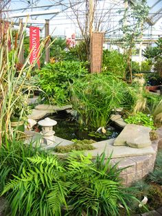 Minter Garden Country Store in Chilliwack, BC. Check out their spring and fall plant sales. Fall Plants, Plant Sale, Spring And Fall, Gardening, Country, Store, Check, Rural Area, Garten