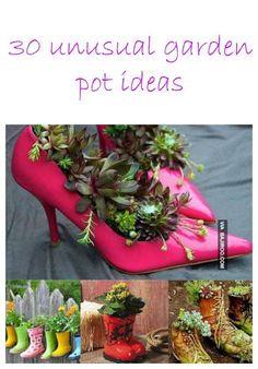 Växter och skor!