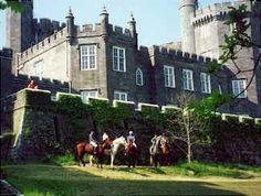 riding horses in Ireland