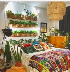 What you think about this decor?  Follow @ecoconltd for more inspiring posts!  -  Want to be featured? Use the hashtag #ecoconftme :)  @plantsandcollecting