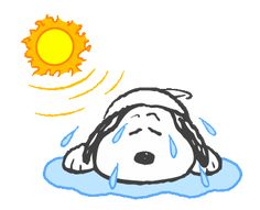 LINE Official Stickers - Sweet Summer Snoopy Animated Stickers Example with GIF Animation Charlie Brown Y Snoopy, Snoopy Love, Snoopy And Woodstock, Snoopy Images, Snoopy Pictures, Peanuts Cartoon, Peanuts Snoopy, Gif Animé, Animated Gif