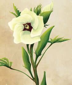 36 Best Tattoos Piercings Images In 2019 Flowers Sunflowers