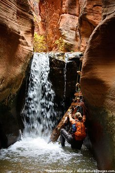 A hiker explores a narrow Canyon near Zion National Park, Utah
