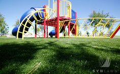 SYNLawn of Ohio provides the perfect synthetic grasses for play grounds!