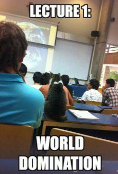 Evil plans need education…