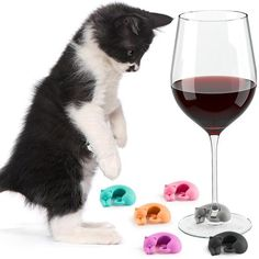 Cat Wine Charms: Set of 6 - Pastel Colours (Limited Edition) Cat Lover Gifts, Cat Lovers, Cat Wine, Cat Themed Gifts, Pastel Colours, Wine Charms, Cute Cats And Kittens, Alcoholic Drinks, Just For You