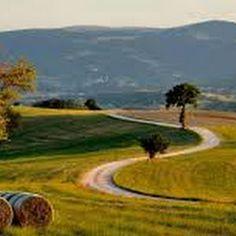"""""""#DajeMarche"""" : una strada fatta di """"buona"""" volontà!"""