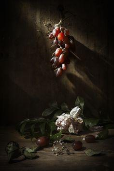 Фотография Натюрморт с виноградом автор Evgeny Kornienko на 500px