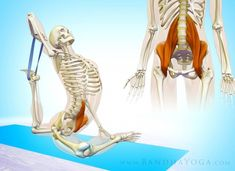 Sheathing and stretching Well-being health relaxation massage stress shiatsu My Yoga, Yoga Flow, Fitness Transformation, Fitness Inspiration, Anatomy Images, Psoas Release, Meditation Exercises, Human Body Anatomy, Pigeon Pose