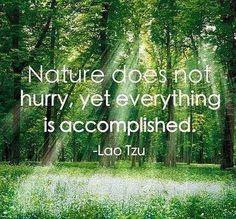** Nature