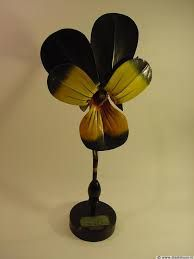 Victorian Botanical model - Google Search