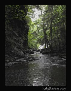 Pisgah Gorge, Alabama..about 10 miles from my home
