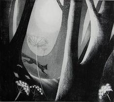 Foxfire by Flora McLachlan