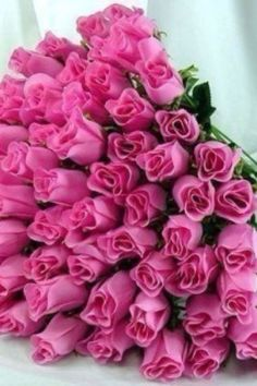 Pink roses~ Pink Roses are my favorite. Be nice if someone cared enough to send me flowers.