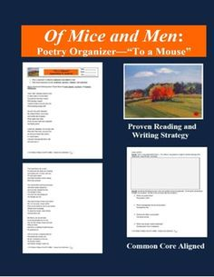 """This poetry analysis and annotation organizer with """"Quick Picture"""" strategy supports close and active reading aligned to the Common Core State Standards for English Language Arts and Literature."""